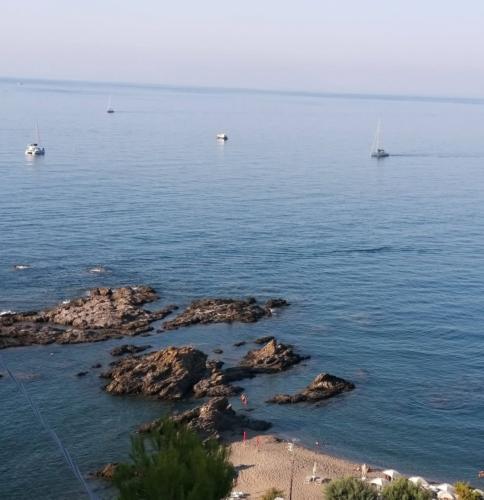 Marino Mare